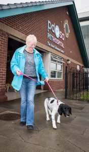 bill-is-able-to-walk-again-thanks-to-pdsa-176x300